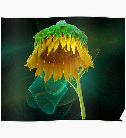 Golden Umbrella Poster