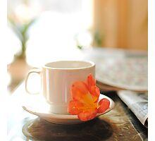 Sunday morning sunshine II. Photographic Print
