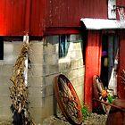 Fun on the Farm by Marcia Rubin