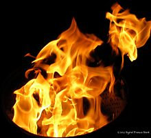 Faces in the Fire by ingridthecrafty