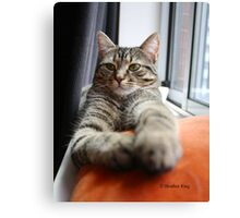 Queen Of Her Castle Canvas Print