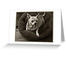 R.I.P. The Pinster Greeting Card