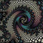 Spiral Invasion... by Roz Rayner-Rix