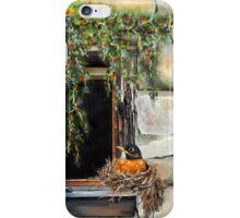 Robin in the Window iPhone Case/Skin