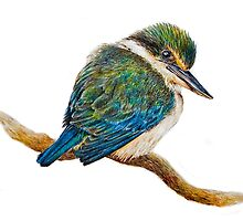 Kingfisher 11. 2010 by Peter Shearer