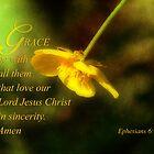 God's Grace  by vigor