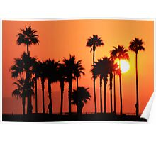 California Sunshine (Huntington Beach, California) Poster