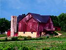 Huge Red Barn by Marcia Rubin