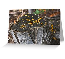 Forest Fungus Greeting Card