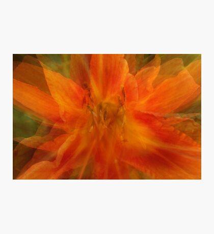 Quatros in Orange Abstract Photographic Print