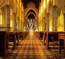 St Patric's, cathedral, Melbourne,Australia by Mark B Williams