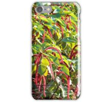 Barbados Spring Theme If you like, please purchase, try a cell phone cover thanks iPhone Case/Skin