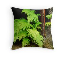 fern and rust Throw Pillow