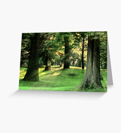 Spring Afternoon in Brookdale Park Greeting Card