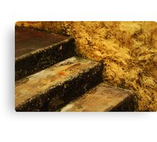 3 steps 2 the wind Canvas Print