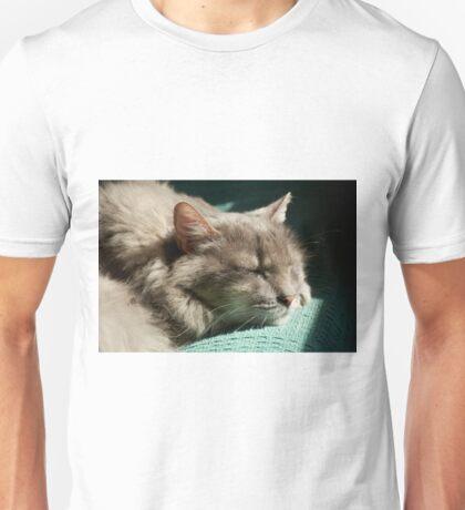 Grey Cat - Sleeping in Sunlight  Unisex T-Shirt