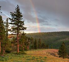 A Rainbow Up High - Ahtanum State Forest - Yakima County by Vincent Frank
