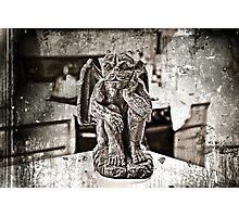 GARGOYLE ANIMAL GOTHAM. Photographic Print