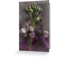 Stock in Pastels Greeting Card