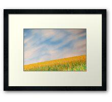 Daffodil Dance Framed Print