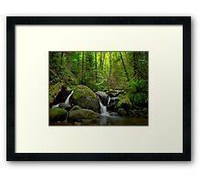 Canyon Creek Spring Runoff Framed Print