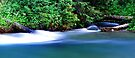 Rushing Rapids by Tori Snow