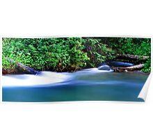 Rushing Rapids Poster