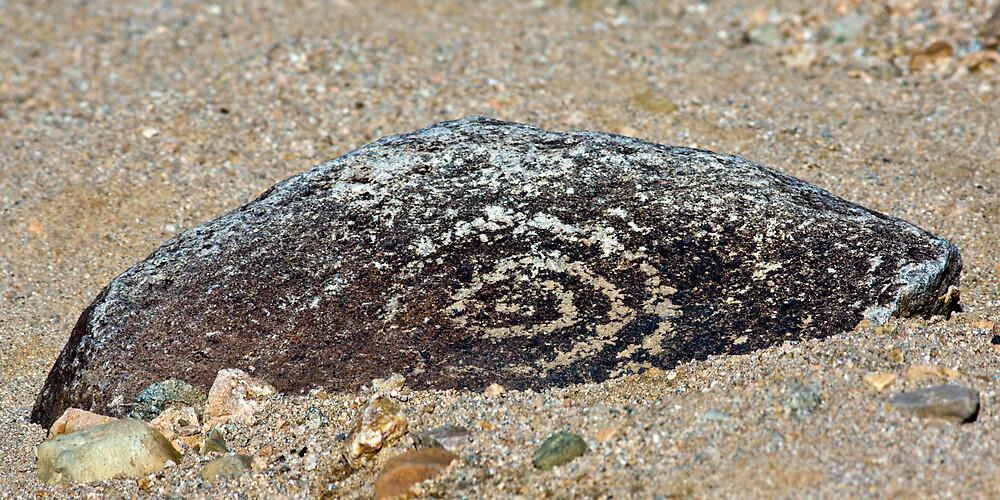 Petroglyph by Randall Ingalls