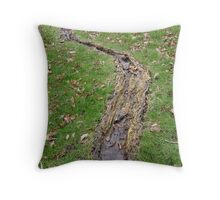 LONDON PARKS NATURALLY 1 ~ LARGE TREE ROOTS FOREVER THIRSTY Throw Pillow