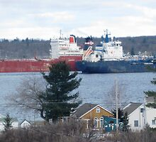 Passing Ships on The St Lawrence Seaway by Tina Smith