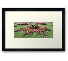 Star Flower Framed Print
