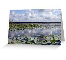 Lake Jackson Greeting Card