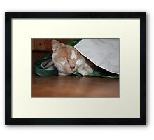 Silly Billy Framed Print