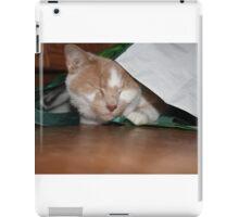 Silly Billy iPad Case/Skin