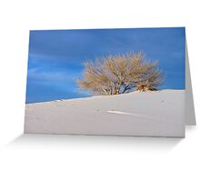 One Tree Dune, White Sands N.M. Greeting Card