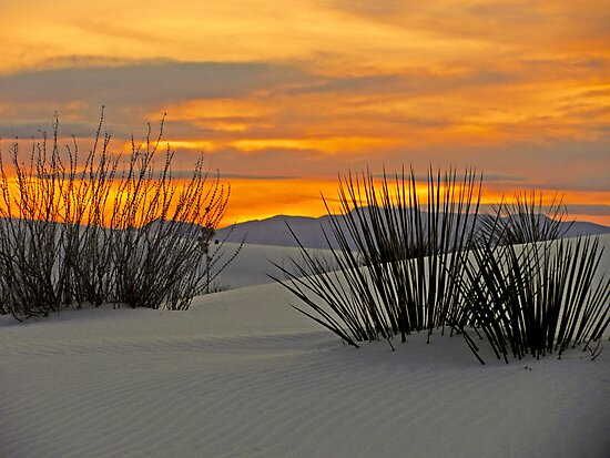 Sunset at White Sands by Maggie Woods