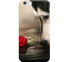 Dog with Rose  iPhone Case/Skin