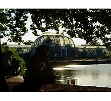 The Palm House (Kew Gardens) Photographic Print