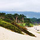 "Carmel Beach by Christine ""Xine"" Segalas"