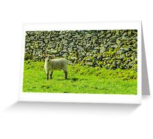 Dry Stone Wall Greeting Card