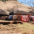 drying the washing, lesotho by mellychan