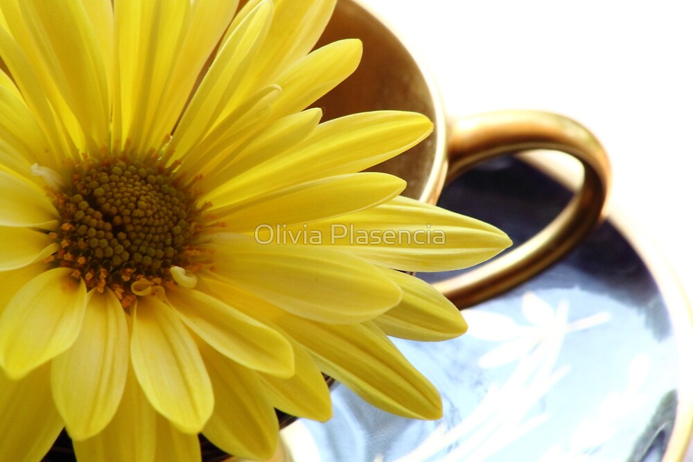 Living Tea by Olivia Moore