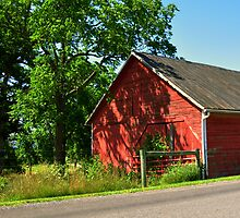 The Little Red Barn by Chuck Chisler