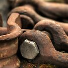 OLD CLEVIS by Joe Powell