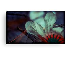 in the dusk they blossomed Canvas Print
