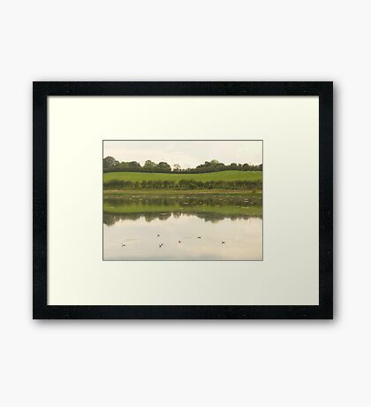Come on in the water is lovely! Framed Print