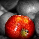 *Red Delicious* by DeeZ (D L Honeycutt)
