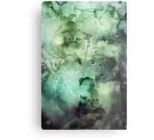 295 Poison Ivy Metal Print