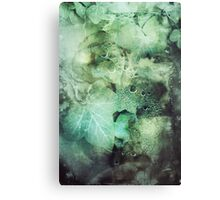 295 Poison Ivy Canvas Print
