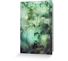 295 Poison Ivy Greeting Card